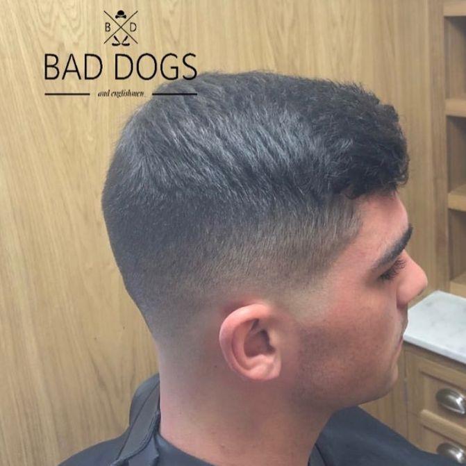 Bad Dogs And Englishmen