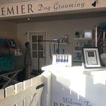 Premier Dog Grooming