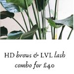 The Lash And Beauty Room