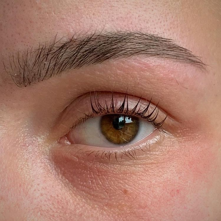 LVL Lashes with HD Brows £45